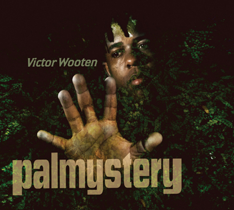 Palmystery - Victor Wooten